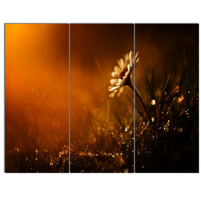 Designart White Wild Flower At Sunset After RainLarge Floral Canvas Art Print - 3 Panels