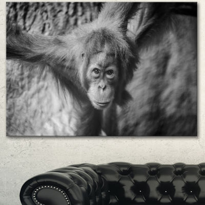 Designart Young Orangutan Black Abstract Canvas Art Print