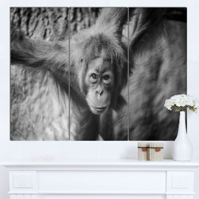 Designart Young Orangutan Black Abstract Canvas Art Print - 3 Panels