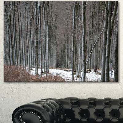 Designart Winter Forest With Thick Trees Forest Canvas Art Print