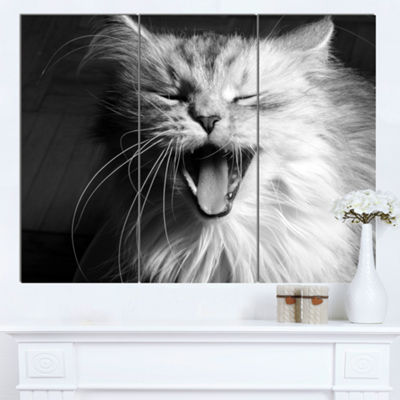 Designart Yawning White Cat Animal Canvas Art Print - 3 Panels