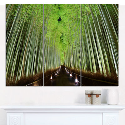 Designart Beautiful Bamboo Forest Panorama Landscape Canvas Art Print - 3 Panels