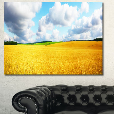 Designart Beautiful Field Panorama Landscape Canvas Art Print