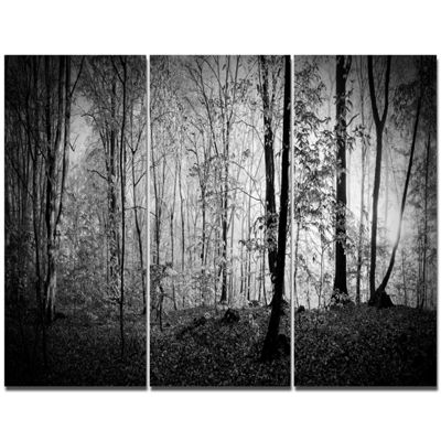 Designart Beautiful Forest Morning Panorama Landscape Canvas Art Print - 3 Panels