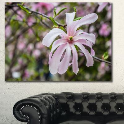 Design Art Beautiful Magnolia Flowers Floral CanvasArt Print - 3 Panels