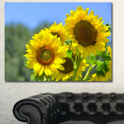 Designart Beautiful Sunflowers View Floral CanvasArt Print