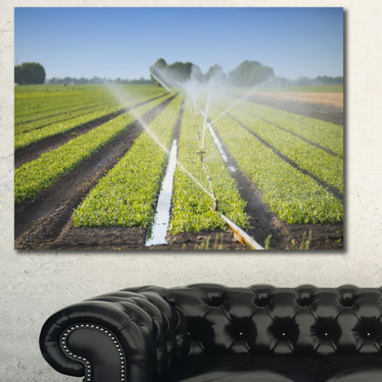 Designart Beautiful View Of Crops Watering Landscape Canvas Art Print