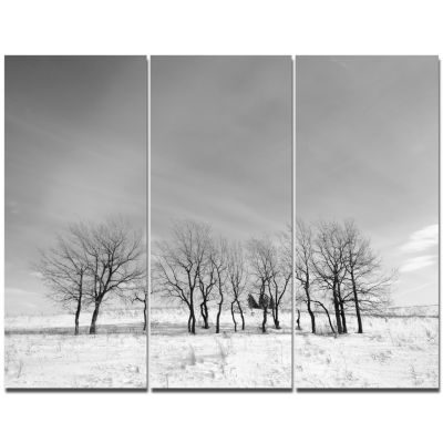 Designart Black And White Trees In Winter Landscape Canvas Art Print - 3 Panels