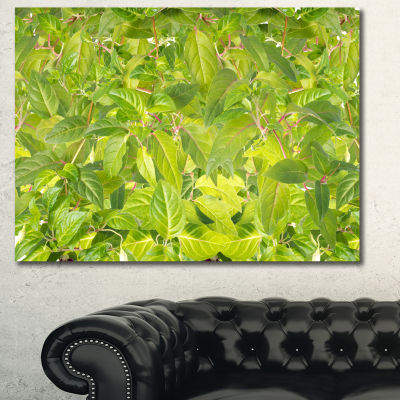Designart Bright Fuchsia Green Foliage Floral Canvas Art Print
