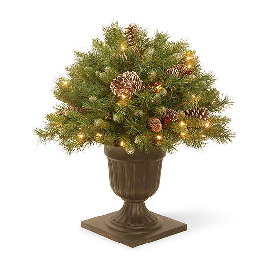 National Tree Co. 2 Foot Pre-Lit Christmas Tree