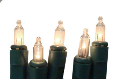 Set of 10 Battery Operated Clear Mini Christmas Lights - Green Wire