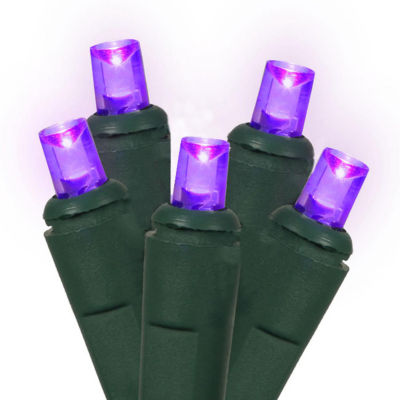 Set of 60 Purple LED Wide Angle Christmas Lights -Green Wire