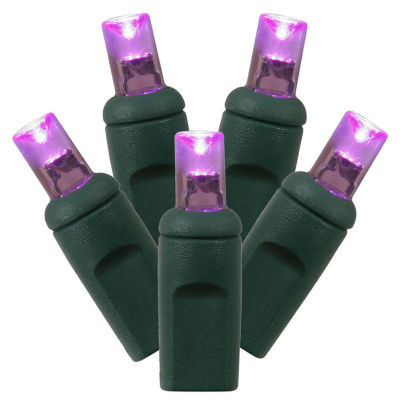 """Set of 50 Purple Commercial Grade LED Wide Angle Christmas Lights 6"""" Spacing - Green Wire"""""""
