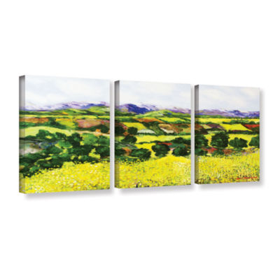 Brushstone Yellow Weeds 3-pc. Gallery Wrapped Canvas Wall Art
