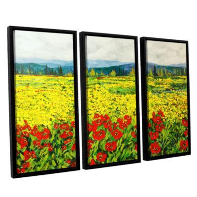 Brushstone Zone De Fleurs 3-pc. Floater Framed Canvas Wall Art