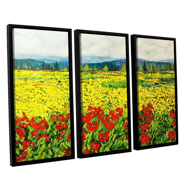 Brushstone Zone De Fleurs 3-pc. Floater Framed Canvas Wall Art ...