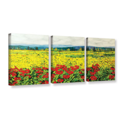 Brushstone Zone De Fleurs 3-pc. Gallery Wrapped Canvas Wall Art