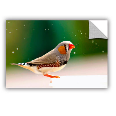 Brushstone Zebrafinch Removable Wall Decal
