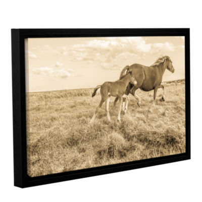 Brushstone Young Horse Takes Direction Gallery Wrapped Floater-Framed Canvas Wall Art