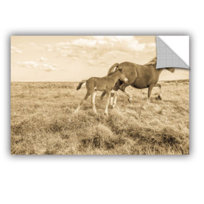 Brushstone Young Horse Takes Direction Removable Wall Decal