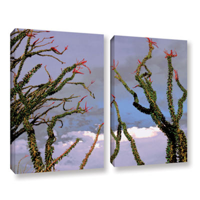 Brushstone Yuma Desert Spring 2-pc. Gallery Wrapped Canvas Wall Art