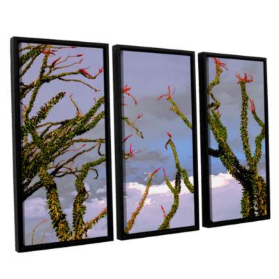 Brushstone Yuma Desert Spring 3-pc. Floater FramedCanvas Wall Art