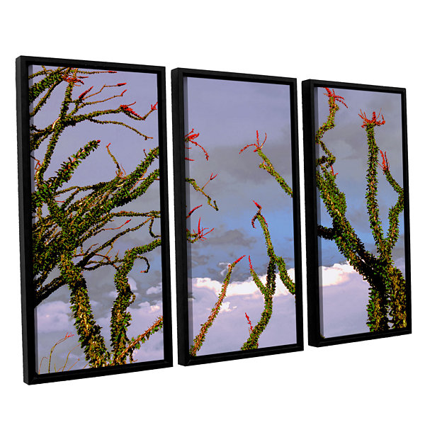 Brushstone Yuma Desert Spring 3-pc. Floater FramedCanvas Wall Art