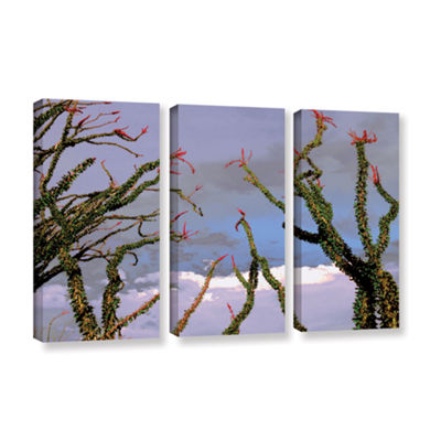 Brushstone Yuma Desert Spring 3-pc. Gallery Wrapped Canvas Wall Art