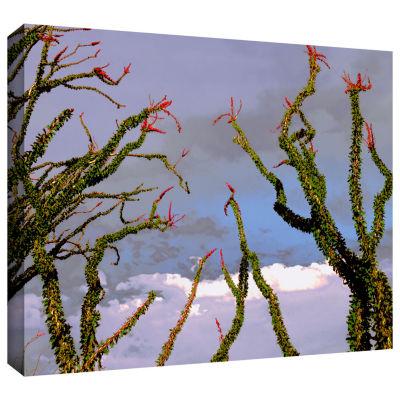 Brushstone Yuma Desert Spring Gallery Wrapped Canvas Wall Art