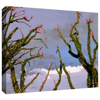Brushstone Yuma Desert Spring Gallery Wrapped Canvas Wall Art