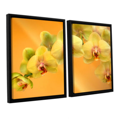 Brushstone Yellow Phalaenopsis 2-pc. Floater Framed Canvas Wall Art