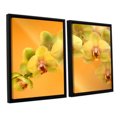 Brushstone Yellow Phalaenopsis 2-pc. Floater Framed Canvas Wall Art