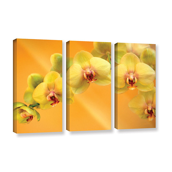 Brushstone Yellow Phalaenopsis 3-pc. Gallery Wrapped Canvas Wall Art ...