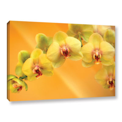 Brushstone Yellow Phalaenopsis Gallery Wrapped Canvas Wall Art