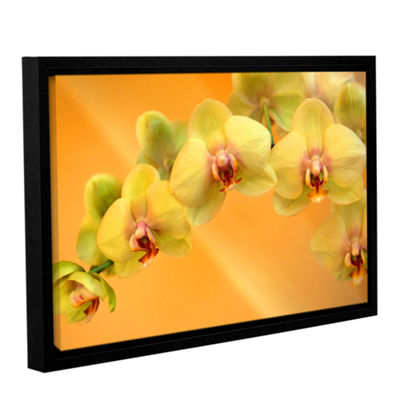 Brushstone Yellow Phalaenopsis Gallery Wrapped Floater-Framed Canvas Wall Art