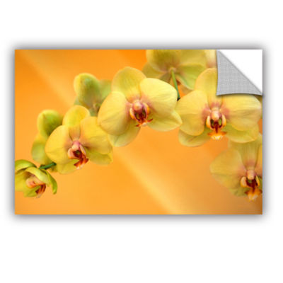 Brushstone Yellow Phalaenopsis Removable Wall Decal