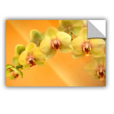 Brushstone Yellow Phalaenopsis Removable Wall Decal