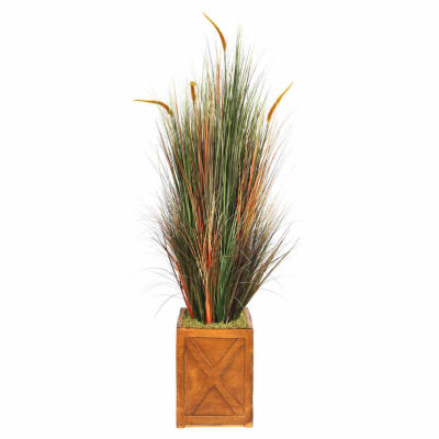 Laura Ashley 69 Inch Tall Onion Grass With Cattails In 13 Inch Planter