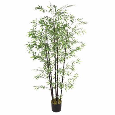 72 Inch Tall Bamboo Tree