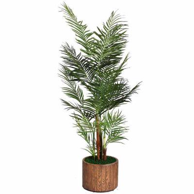 73 Inch Tall Palm Tree In 16 Inch Fiberstone Planter
