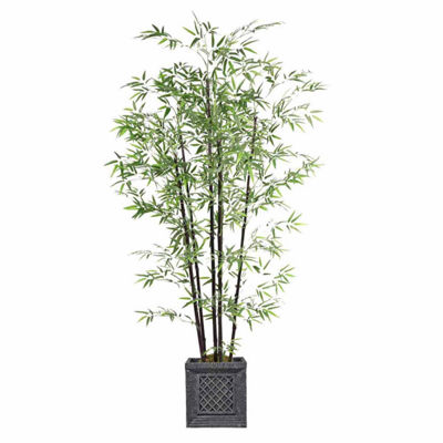 78 Inch Tall Bamboo Tree In Planter