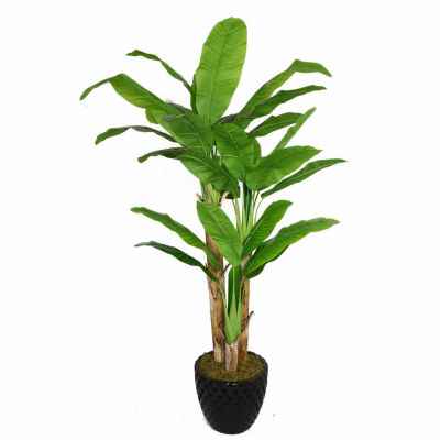 Laura Ashley 78 Inch Tall Banana Tree With Real Touch Leaves In Faceted Planter