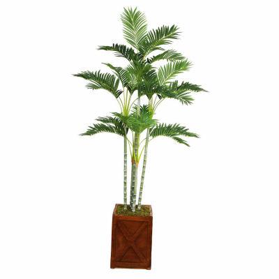 77 Inch Tall Palm Tree In 13 Inch Fiberstone Planter