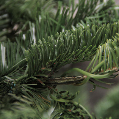 4.5' Noble Fir Layered Artificial Christmas Tree -Unlit