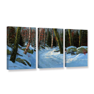 Brushstone Winter Road 3-pc. Gallery Wrapped Canvas Wall Art