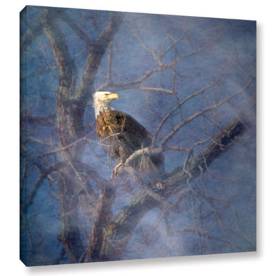 Brushstone Wise Bald Eagle Gallery Wrapped CanvasWall Art
