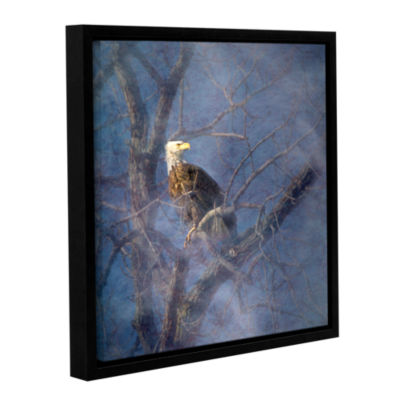 Brushstone Wise Bald Eagle Gallery Wrapped Floater-Framed Canvas Wall Art
