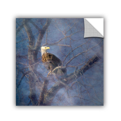 Brushstone Wise Bald Eagle Removable Wall Decal