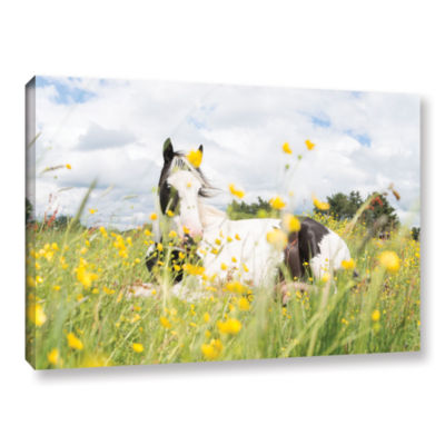Brushstone White And Black Horse Gallery Wrapped Canvas Wall Art