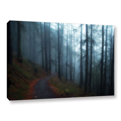 Brushstone Woods Gallery Wrapped Canvas Wall Art